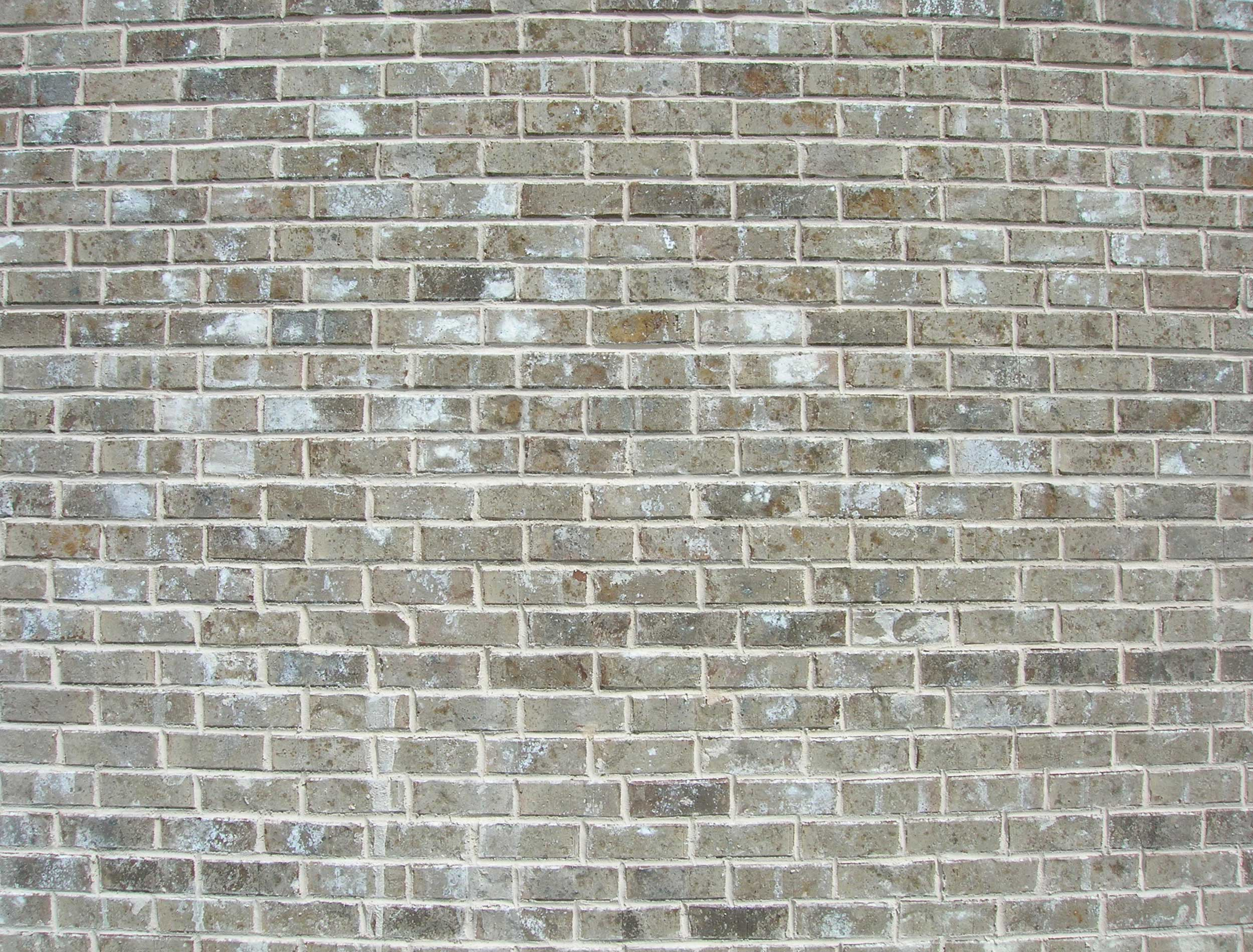 Grey Brick Homes http://packerbrick.com/products/face-brick/queen/queen-gray/jenkins-queen-size-gray-spanish-fort